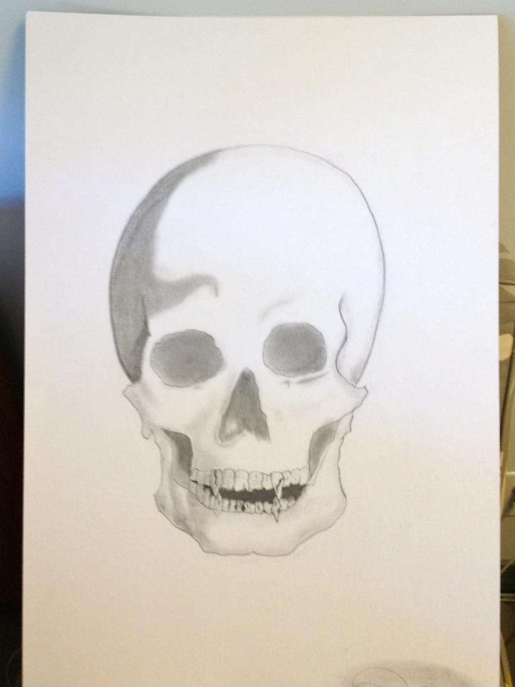 Sketched Skull Face